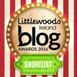 irish blog awards 2016, wordpress websites, kilkenny, ireland