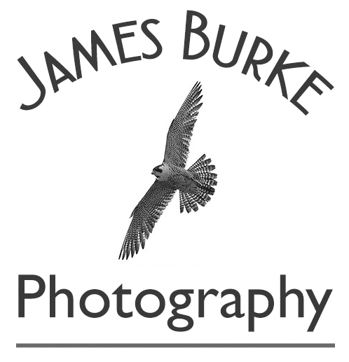 photography, kilkenny, carlow, laois, waterford, wexford, product photography, commercial photography, SME,
