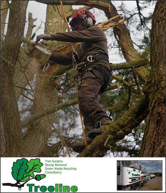 commercial photography, Treeline tree surgery, Ireland
