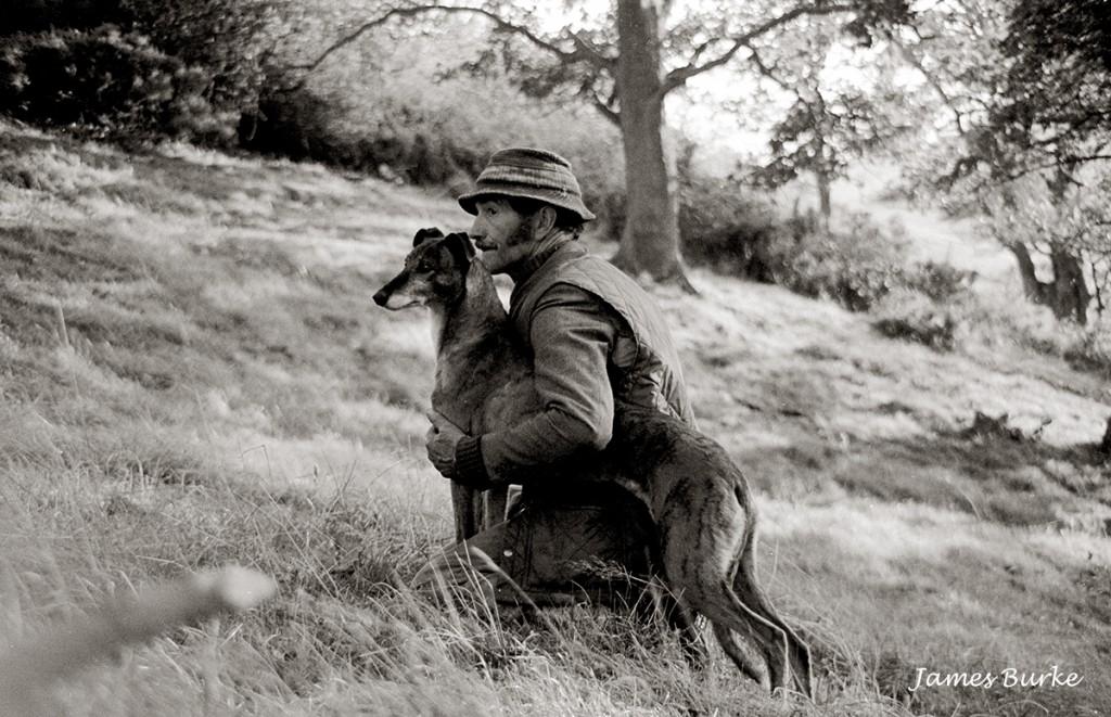 poacher, Wales, montgomery, powys