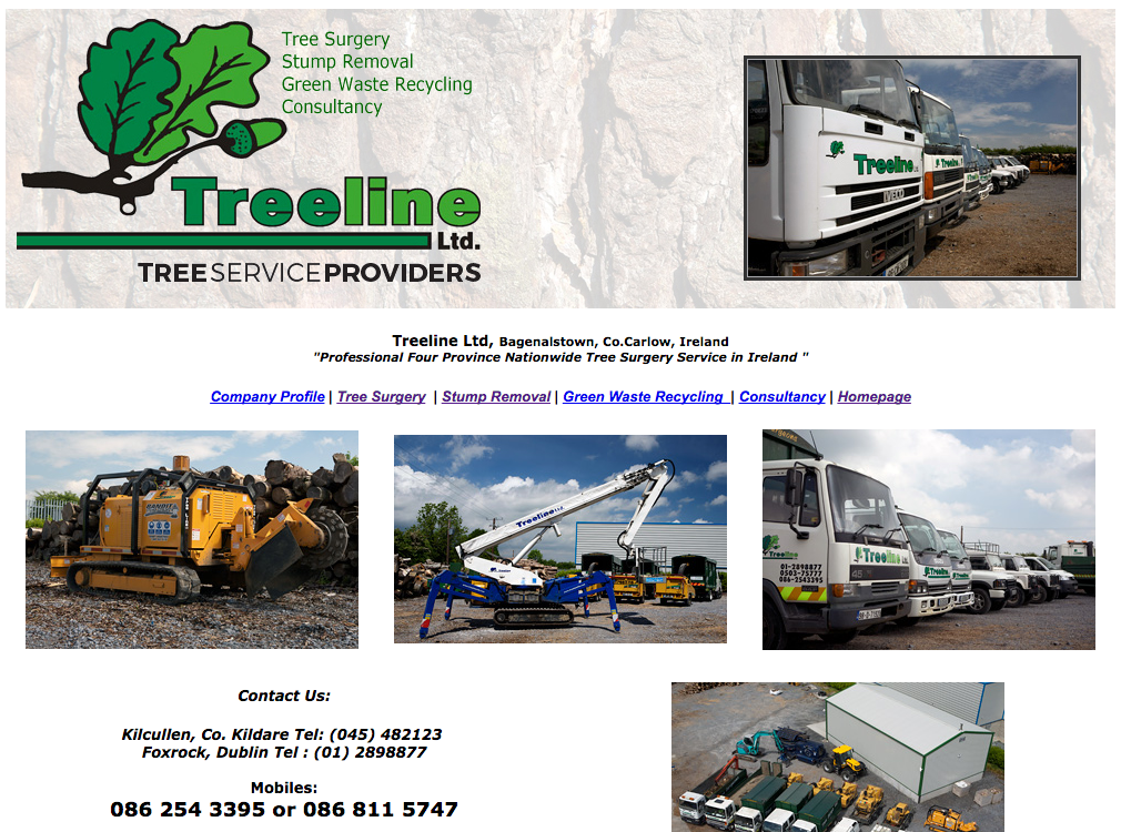 Treeline, Carlow, Dublin, Kilkenny, tree surgeons, tree felling,